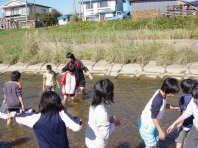 相内川の観察