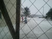 2011-01-19 13.17.51.jpg