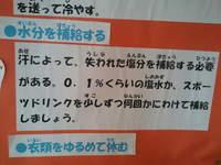 2011-07-29 13.49.20.jpg