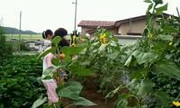 2011_0831_091147_652.jpg